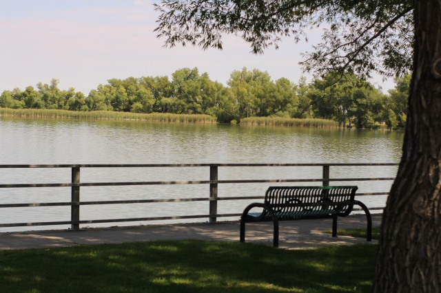 bench and water